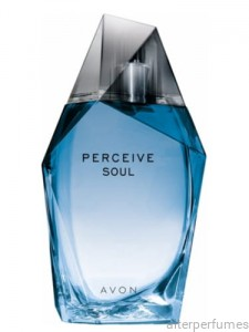 Avon - Perceive Soul For Him - Eau de Toilette 100ml